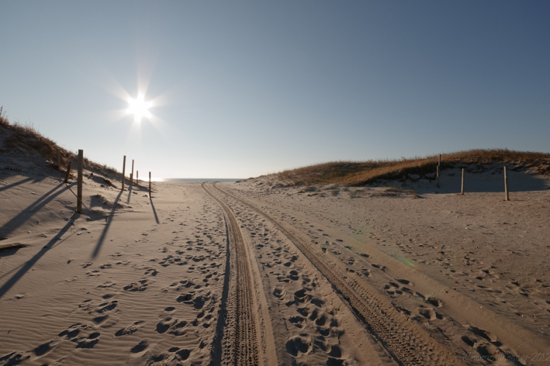 Beach Scene Original