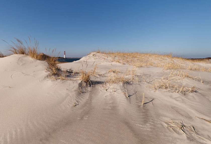 Beach Scene 2 Original